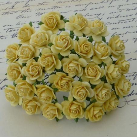 Rosen, gelb, 20mm