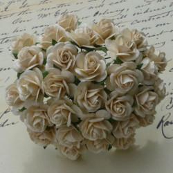 Rosen, elfenbein, 20mm