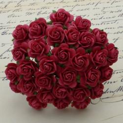 Rosen, korallenrot, 20mm