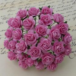 Rosen, pink, 20mm