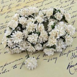 Gänseblümchen, 15mm, weiss
