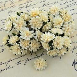 Gänseblümchen, 15mm, elfenbein
