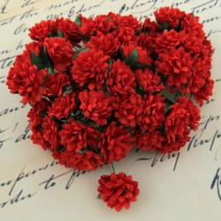 Gänseblümchen, 15mm, rot