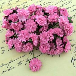 Gänseblümchen, 15mm, pink