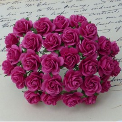 Rosen dunkelpink