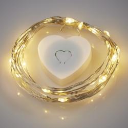 LED-Leuchtdraht m. Herzbox, 20 Lampen, 2m