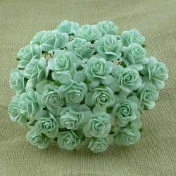 Rosen aqua, 10mm
