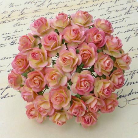 Rosen champagne-pink, 10mm