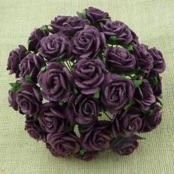 Rosen, aubergine, 20mm