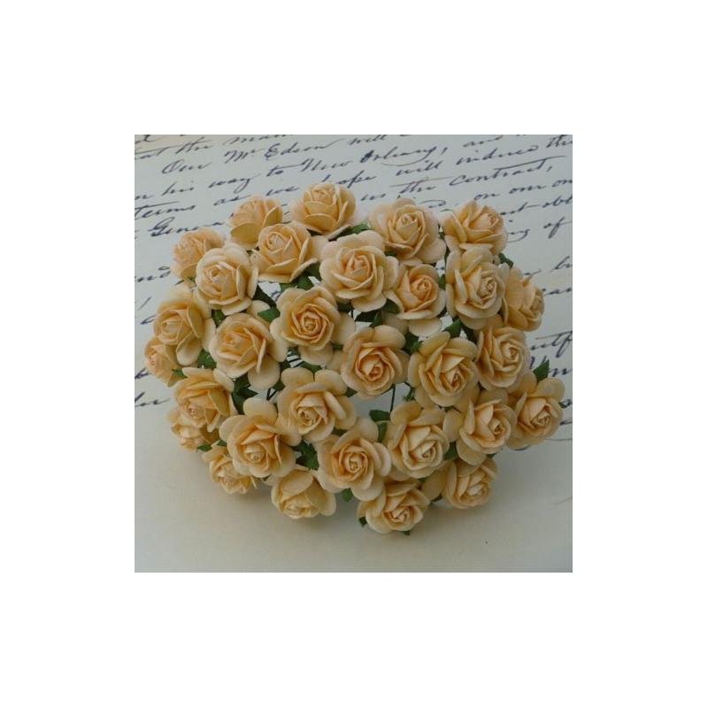 Rosen, herbstgold, 20mm