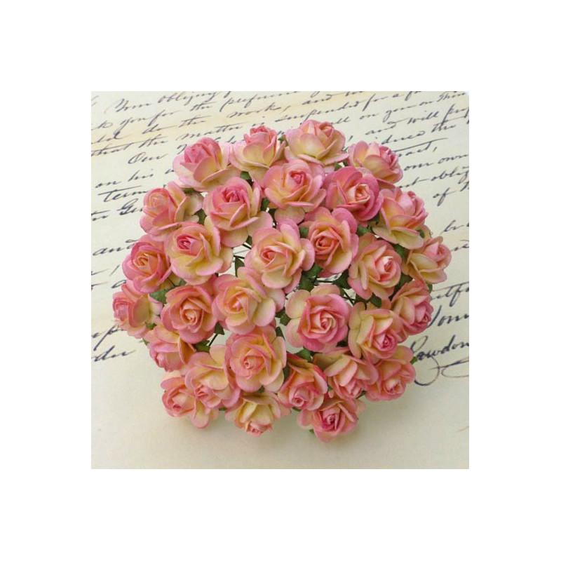 Rosen, champagne-pink, 20mm