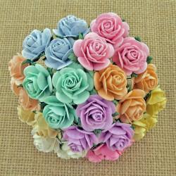 Rosen, Pastell-Farben, 20mm, 100Stk.