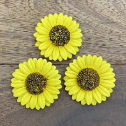 Sonnenblumen, 50Stk., 50mm
