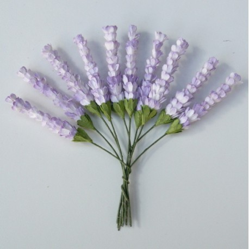 Heidekraut, 2-Ton lila, 5Stk
