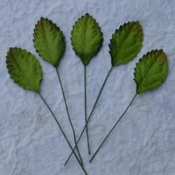 Blätter, grün, 30mm, 100Stk.