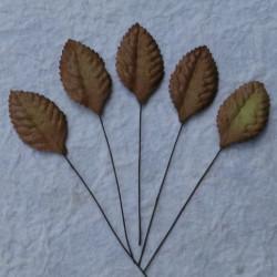 Blätter, braun, 35mm, 100Stk.