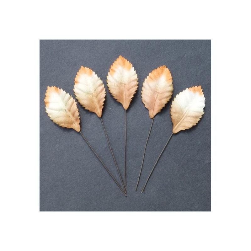 Blätter, weiss-orange-braun, 35mm, 100Stk.
