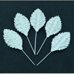 Blätter, weiss, 40mm, 50Stk.
