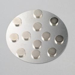 Magnete, Ø 10mm, extra stark, 12 Stk.