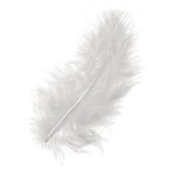 Marabufedern weiss, Länge: ca. 10cm, 15Stk.
