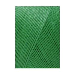 Lang Schulgarn, 0040, grün