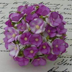 Sweetheartblüte, 2-ton violett, ca. 15mm, 100Stk.